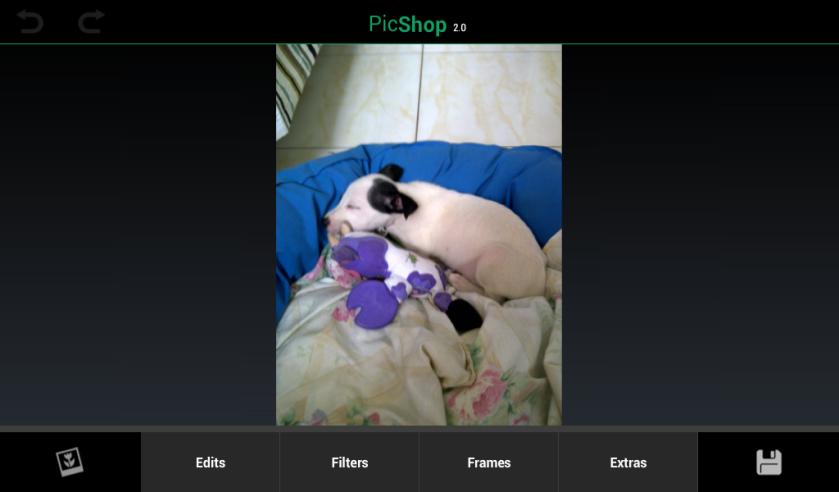 PicShop 01