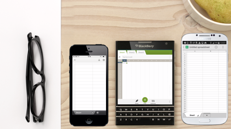 BB Passport Designe